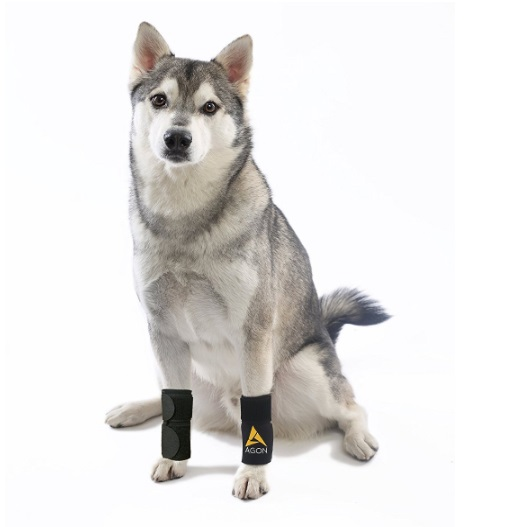 Dog-Canine-Front-Leg-Brace-Paw-Compression-Wraps