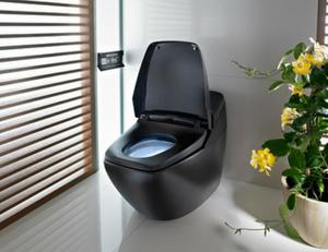 Best-Automatic-Closing-Toilet-Seats