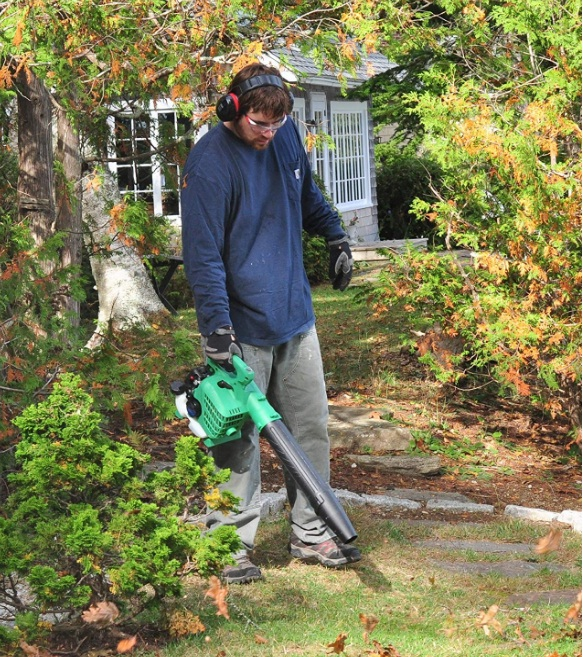 Best Portable Electric Handheld Leaf Blower