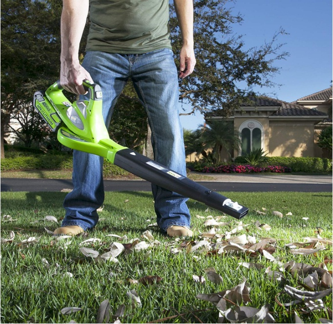 best variable speed cordless leaf blower