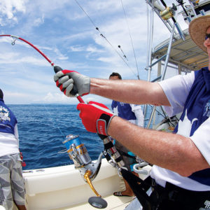 top-saltwater-spinning-reels