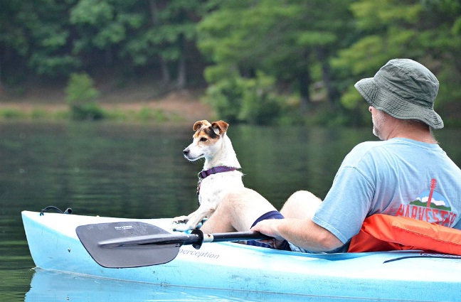 Best-Inflatable-Boats-for-Dogs