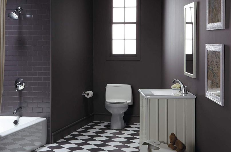 kohler-toilets-for-seniors