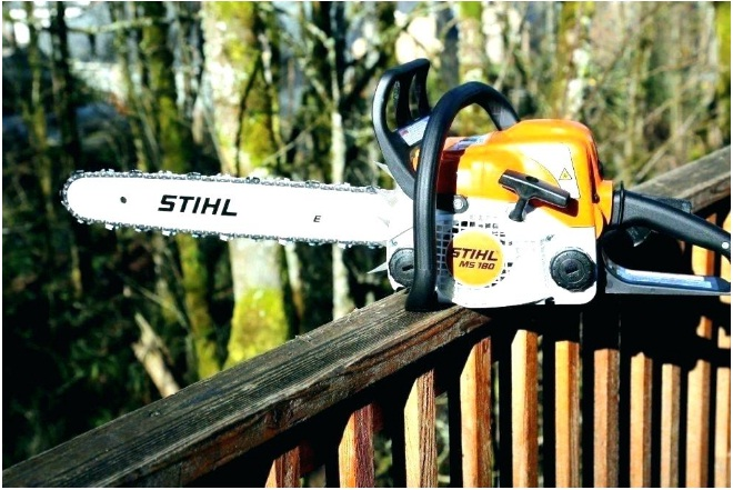 Best Pole Saws 2019