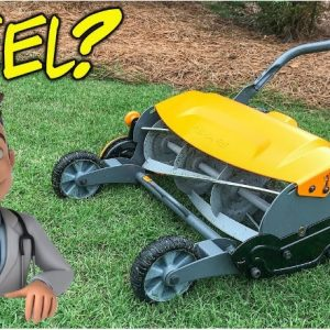 best reel lawn mower reviews